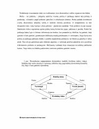 rinkos ekonomikos prekybos sistema)